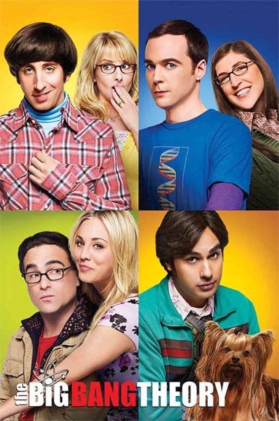 Big bang theory partners poster