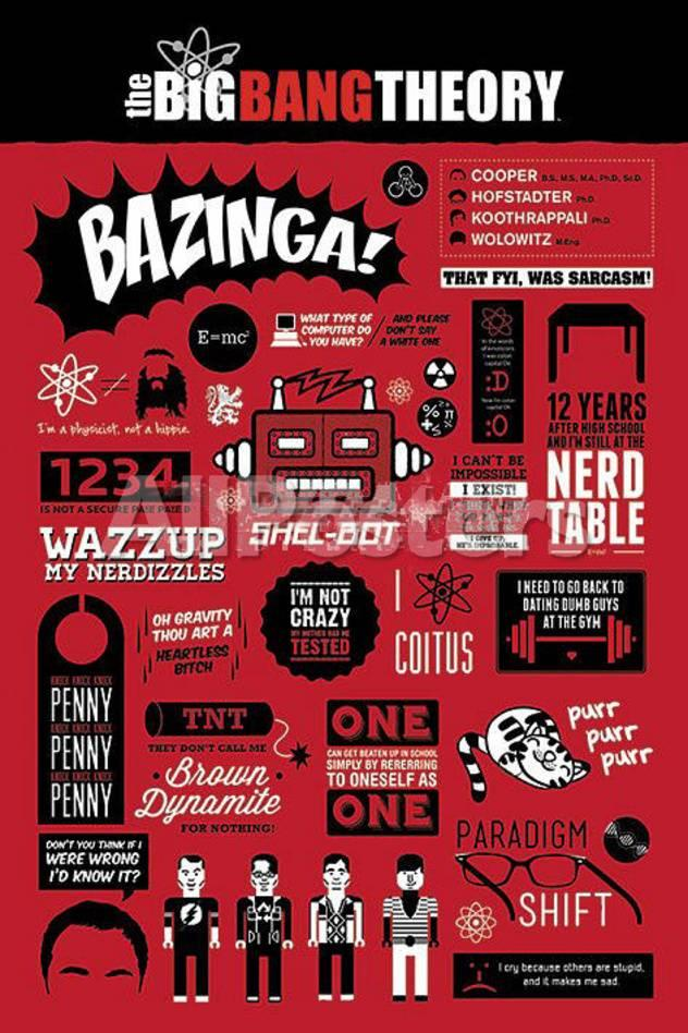 Big bang theory famous quotes poster
