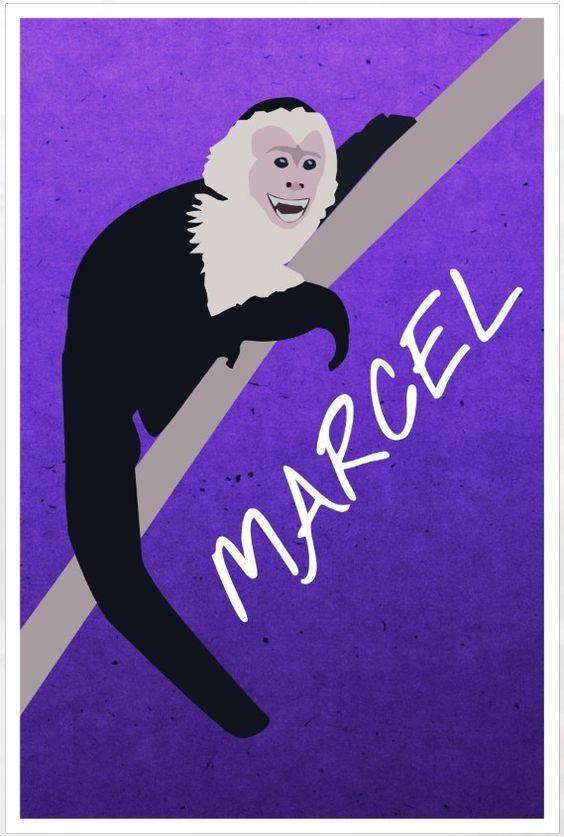 Friends poster Ross's monkey Marcel