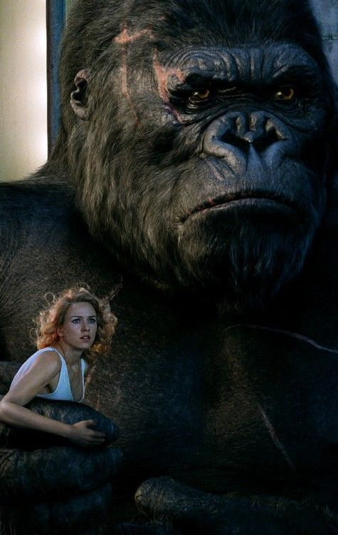 King Kong saves Ann from V-Rex poster