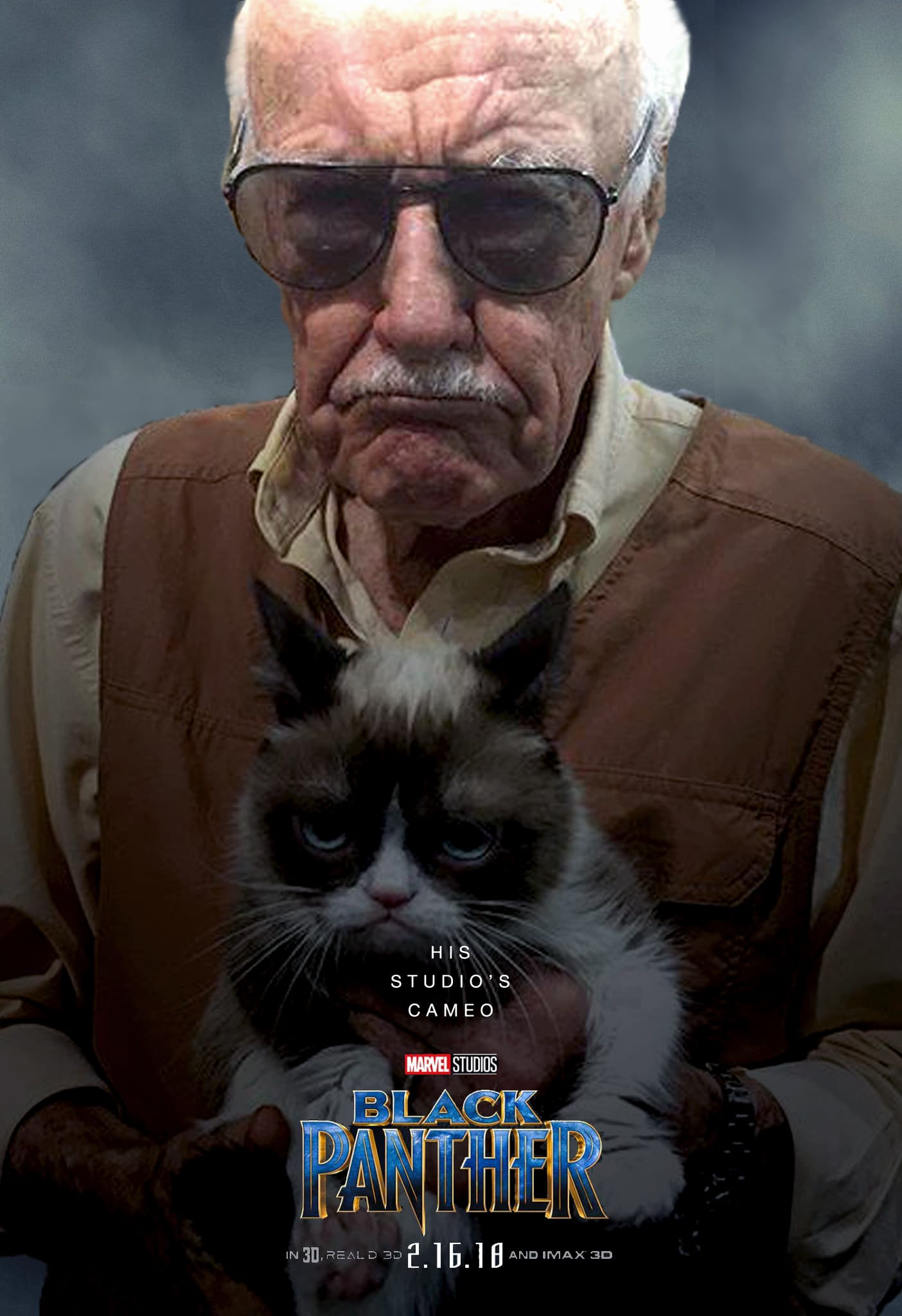 Black-Panther-hd-printable-Poster-hd-stan-lee-cameo