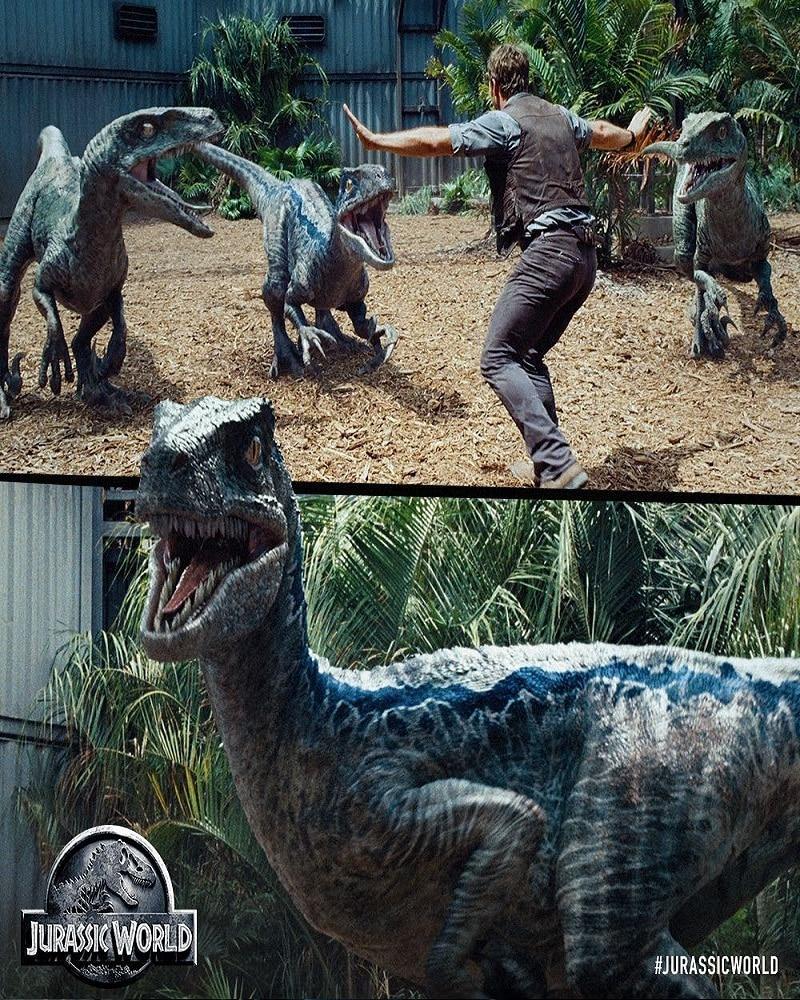 Jurassic-World-Poster-hd-printable-blue-chris-pratt-owenn-train-dinosaurs