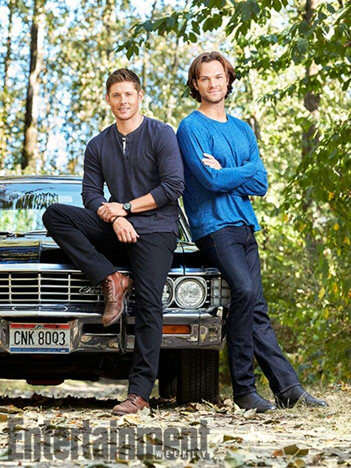 Supernatural posters brothers