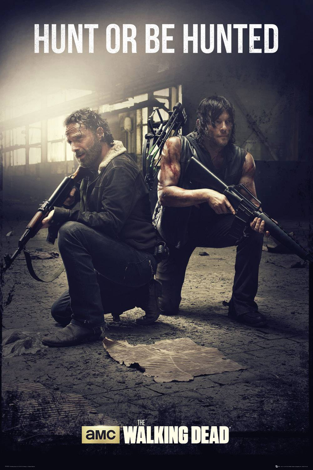 The Walking Dead Daryl and Rick poster