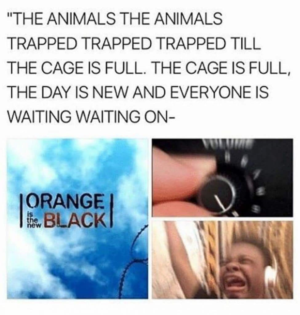 orange is the new black animal dialogue