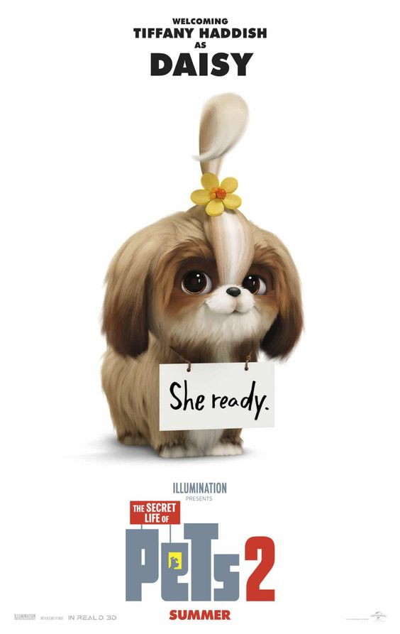 the secret life of pets 2 poster of daisy