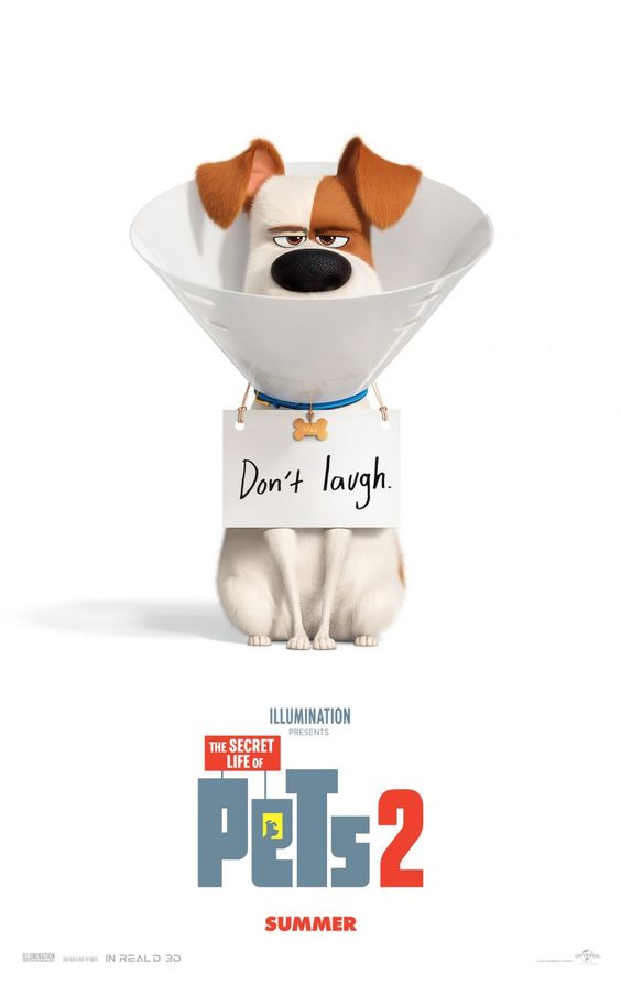 secret life of pets 2 poster of max with a cone