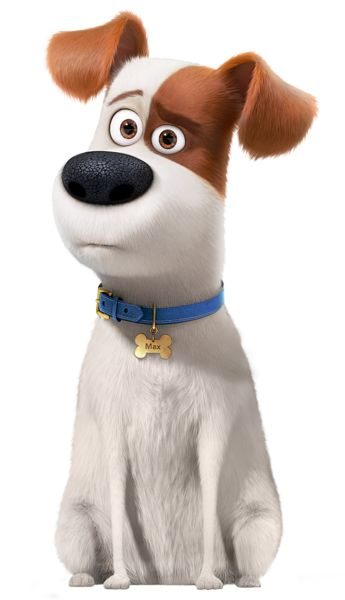 secret life of pets image of max the terrier