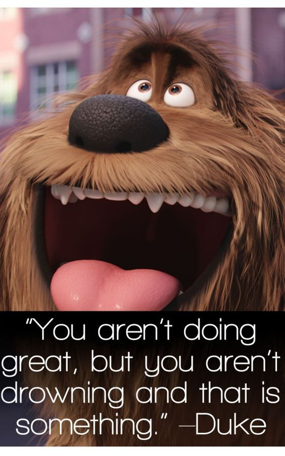 the secret life of pets image of famous quote